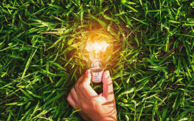 Comitta: Small Businesses Can Apply for Energy Efficiency Grants
